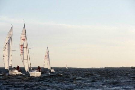 Πίνακας ζωγραφικής Sailing